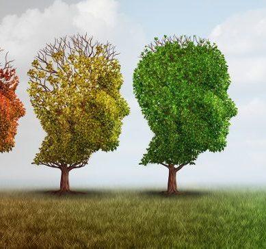 Caltagirone, meeting sulle demenze